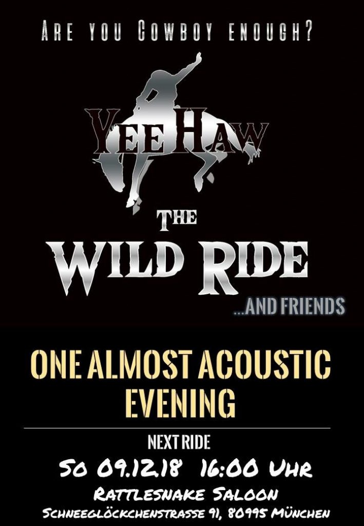 The Wild Ride and Friends - An Almost Acoustic Evening