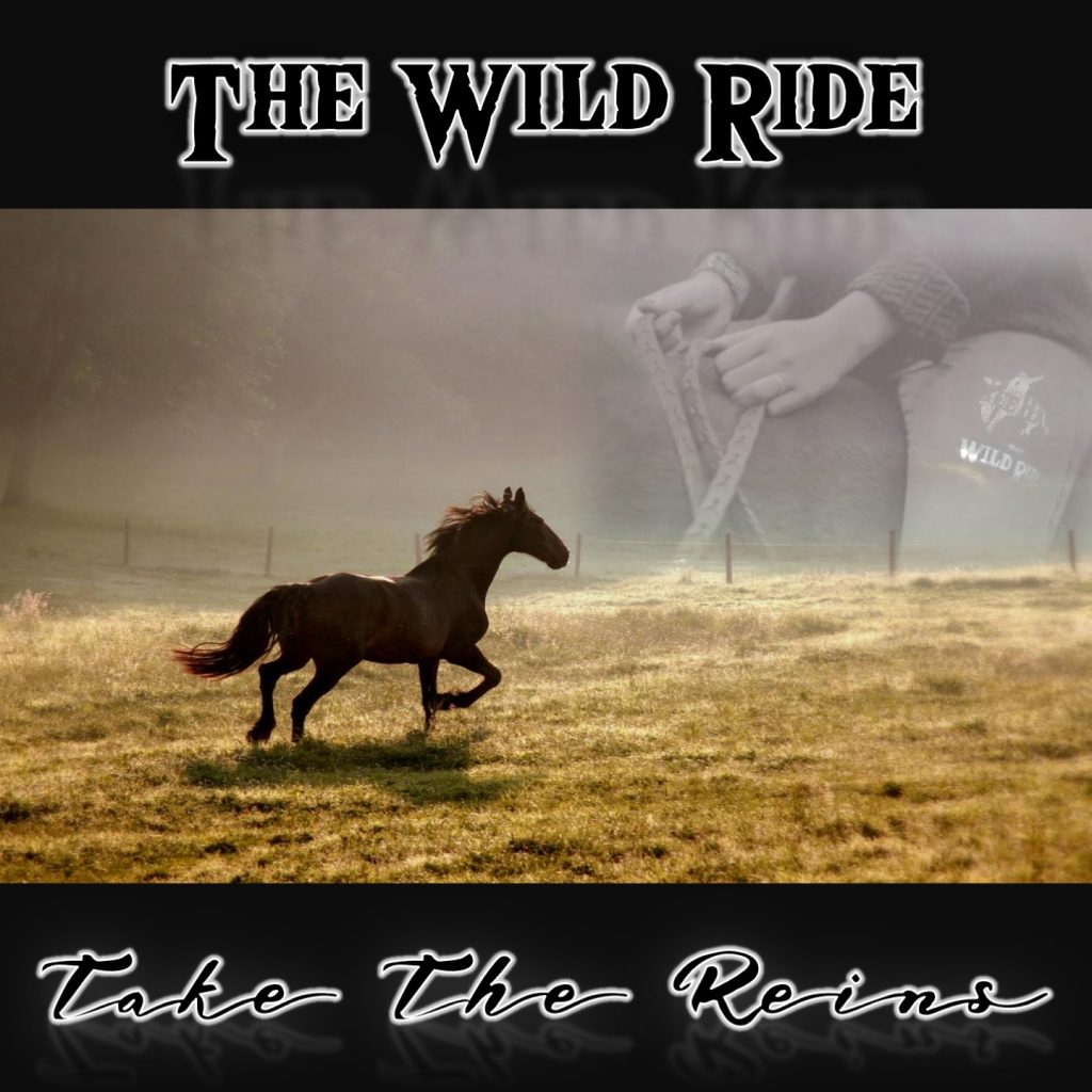 Take The Reins Cover
